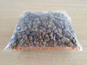 Magic truffels kilo
