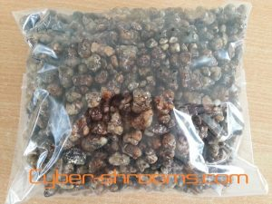 Magic truffels online